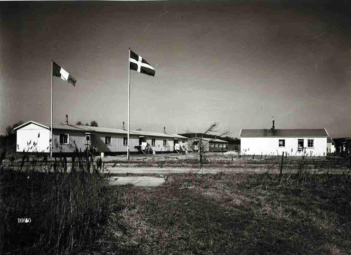 italienska kolonin 1948.jpg