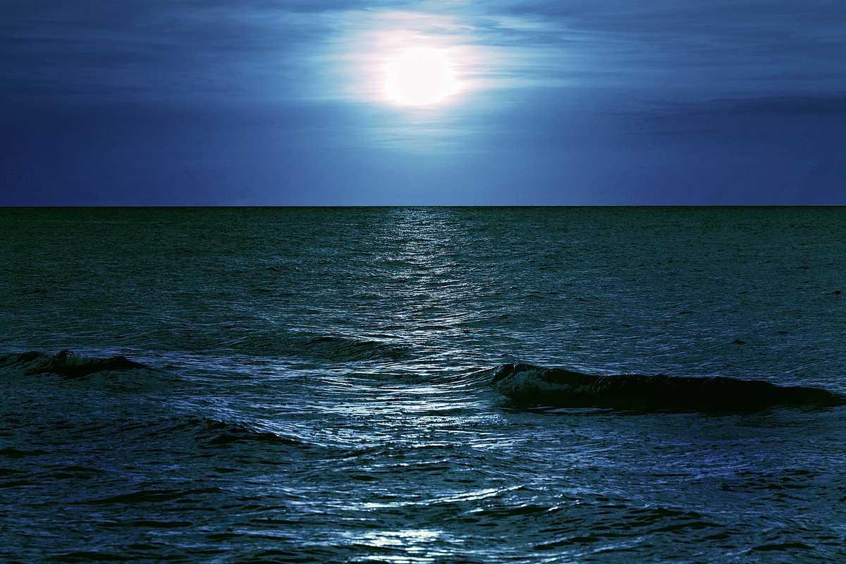 Mörkt hav