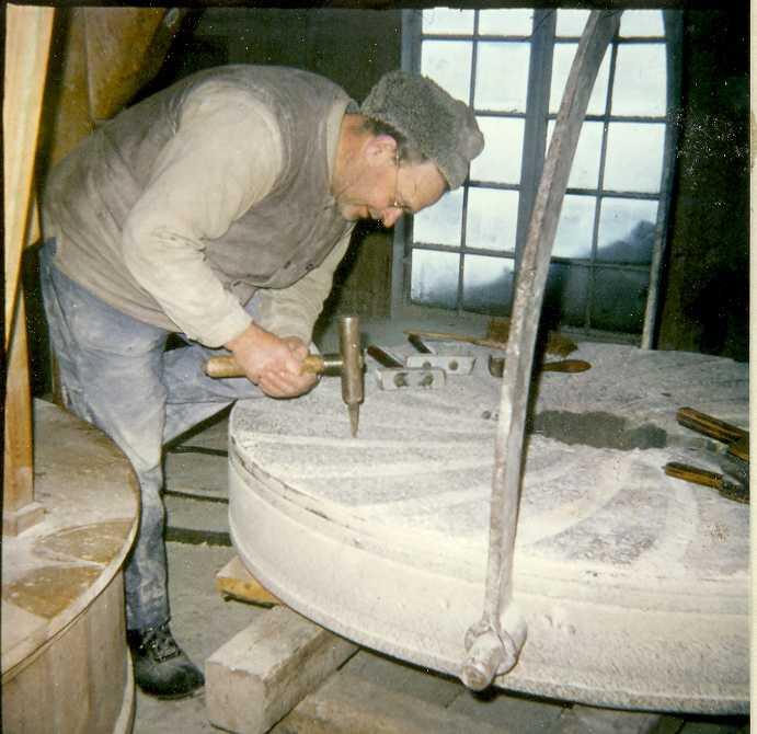 Mjölnarfamilj Steneby