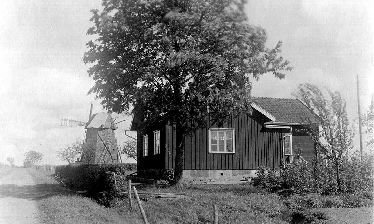 MJÖLNARE - ETT YRKE MED RENT MJÖL I PÅSEN<br /><br />