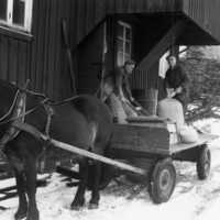 Mjöltransport.jpg