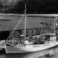 Fiskefartyget GG 338 Anglia