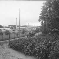 Dalsjöfors fabriker 1919