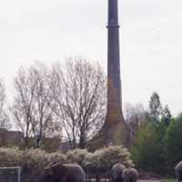 Elefanter på besök i Västra Frölunda 2003