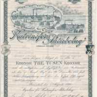 Katrinefors aktiebrev 1898 (C107-1, F1-1).jpg