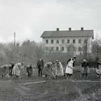 Vårbruk i Seminarieträdgården år 1923..jpg