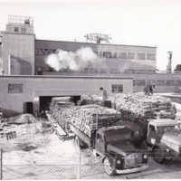 VINJETTBILD. Katrinefors, Wallboardfabriken, 1950-tal.jpg
