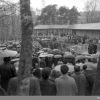Munkedals folkets park 1955