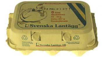 Svenska Lantägg 2.jpg